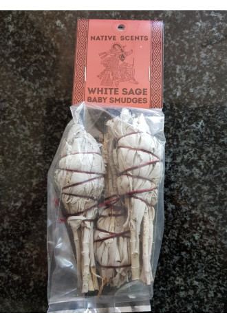 White Sage smudge,small(3)